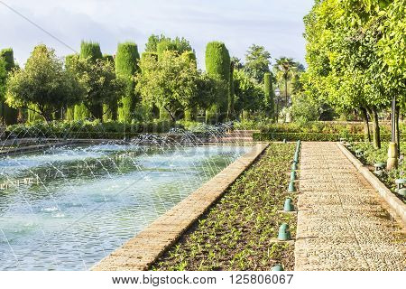 background landscape view of the fountains and cypress alley in the garden of the Alcazar of the Christian Kings in Cordoba, Spain