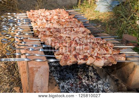 Meat is fried on skewers over charcoal on a picnic