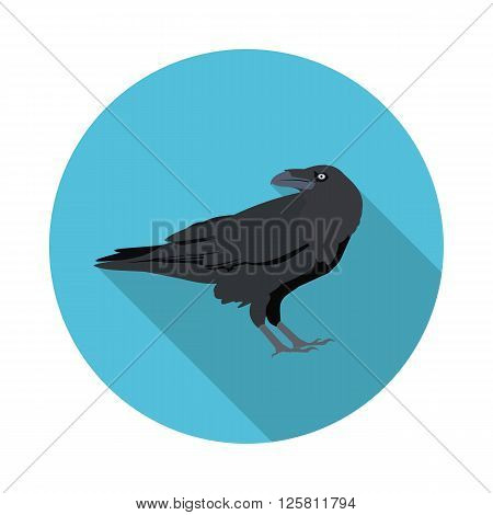 flat icon Raven in vector format eps10