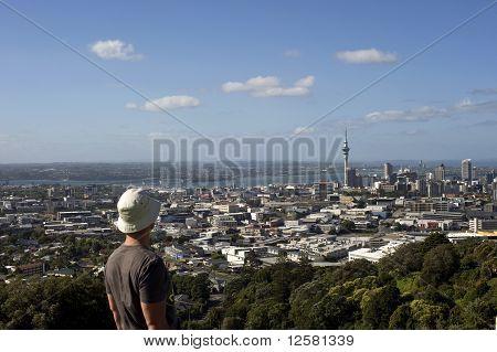 Landscape Of Auckland City 2