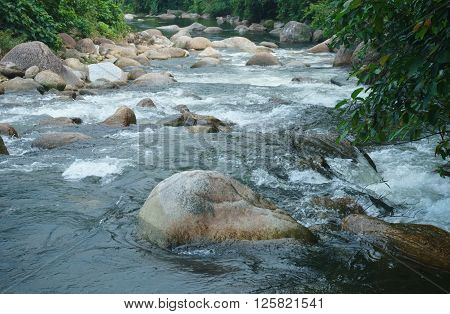 Stone and water of small brook Nakornsritammarat Province Asia Thailand