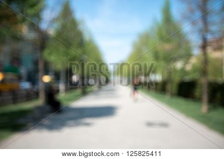 Blurred Park Background