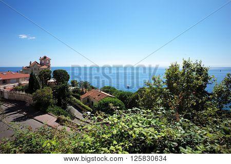 Beautiful Villa Among Green Trees