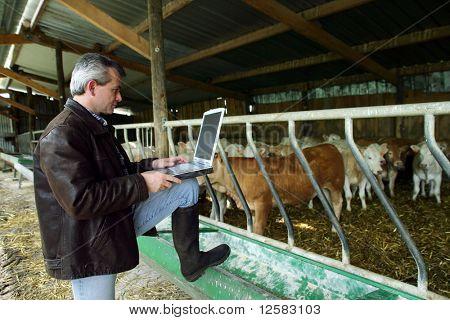 Agricultor com um telefone e um computador portátil