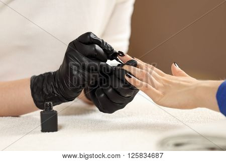 Closeup picture manicurist paints client nails in spa beauty salon. Manicure master in black gloves does manicure