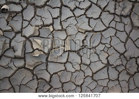 Photo's cracked earth at spring. Drought. Close-up.