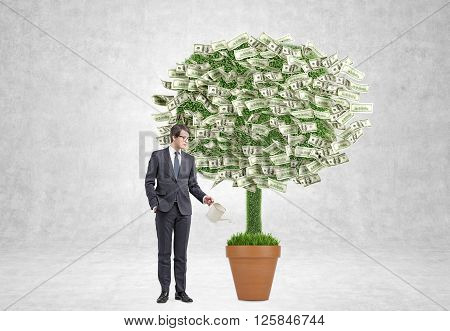 Businessman watering pot with money tree. Concrete background. Concept of profit.