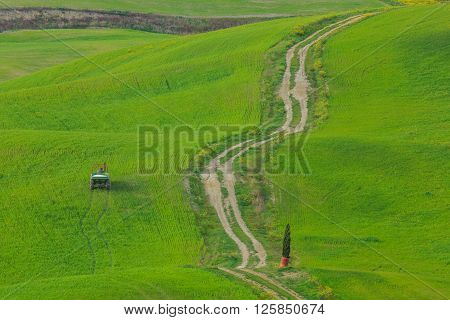 Breathtaking Landscape Photos of the Rolling Hills of Tuscany, Italy ** Note: Soft Focus at 100%, best at smaller sizes