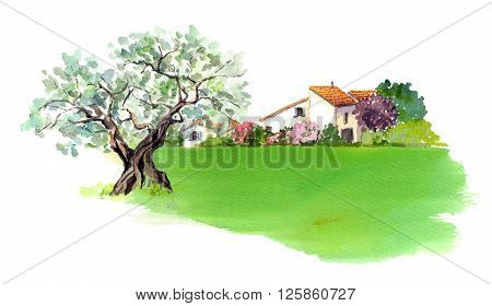 Rural provencal house and  green field in Provence, France. Watercolor
