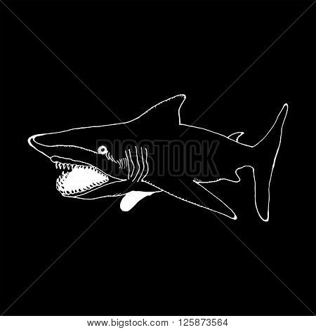 monochrome hand draw a shark in the style of a sketch on a black white background, used for banners, flyers, coloring books, tattoo