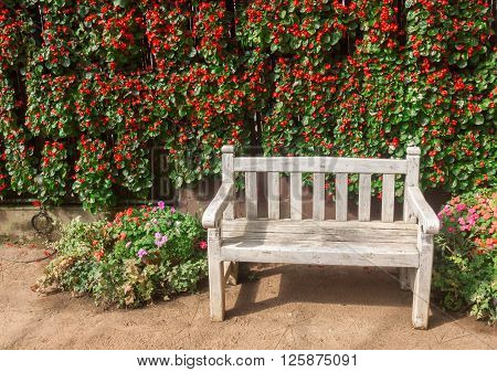 Hot sunlight in garden with wood chair