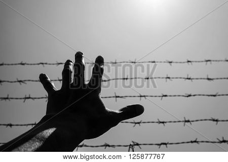 Silhouette hand extending to the sky with barbwire and sunlight, black and white