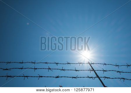Barbwire against sun flare effects on blue sky