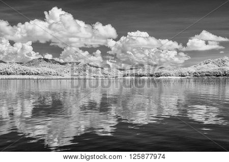 Black & White Infrared landscape. Lake and trees Thailand taken in Near Infrared