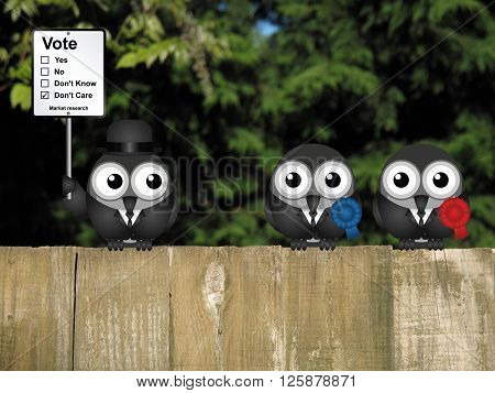 Comical market research voting intention sign with birds perched on a timber garden fence against a foliage background