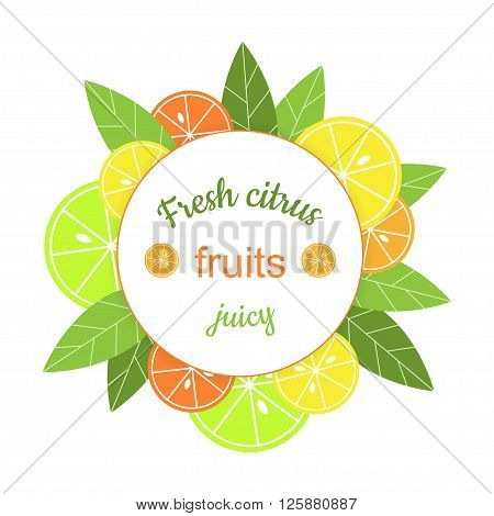 Vector round frame with citrus. Banner with stylized citrus fruits and leaves. Grapefruit, lime, lemon and orange. Citrus mix isolated on white background