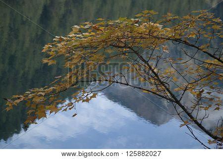 Beautiful Scenery In Jiuzhaigou, Sichuan Province, China
