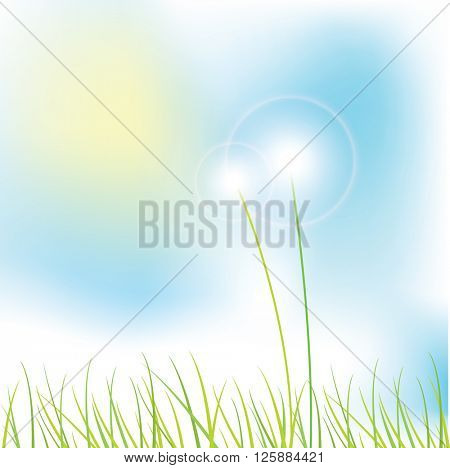 Nature background with copy space