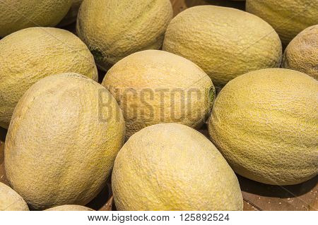 Cantaloupe Melon From Market Shelves Real With Flaws And Bruises