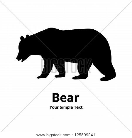 Vector illustration of a wild predator animal. Isolated bear silhouette on a white background.