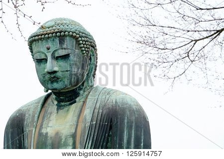 The famous great buddha is located in kamakura, japan.