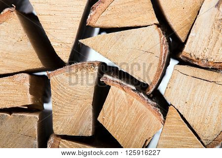 The Birch Fire wood isolated on white