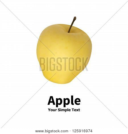 Vector illustration of an isolated realistic yellow apple fruit on a white background with an inscription.