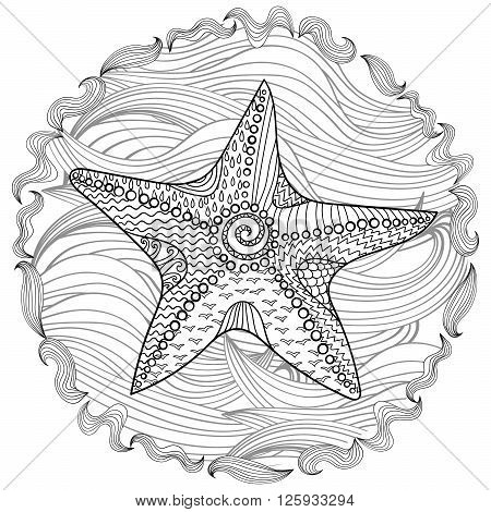 Starfish with high details. Adult antistress coloring page. Black white hand drawn doodle oceanic animal. Sketch for tattoo, poster, print, t-shirt in zentangle style. Vector illustration.