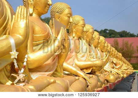 Close up of Thousand Golden Buddha statues with clear weather
