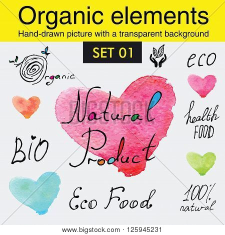 Organicelements and raw food diet designs. Organic food tags and elements set for meal and drink, cafe, restaurants and organic products packaging.Vector illustrated bio detox logo.