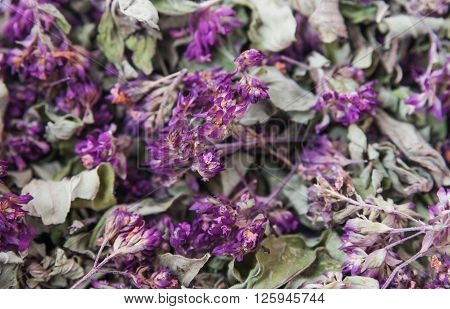 Dry aromatic flowers herbs Origanum vulgare background