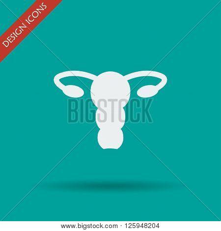 female uterus icon. Flat design style eps 10
