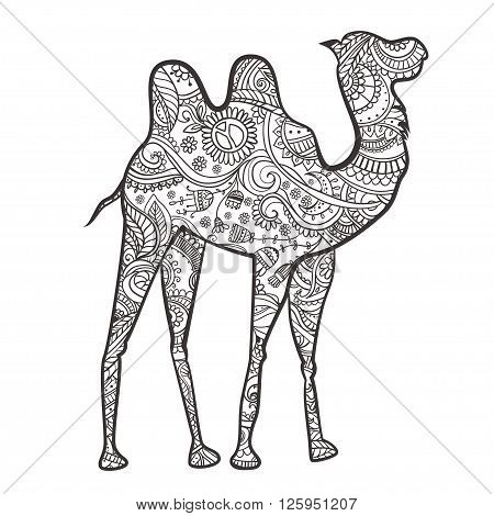 Greeting card with camel. Ornamental of animal made in vector. Design element for decorations. Hand drawn map with camel desert. He lives in the arid region desert, semi-desert and steppe