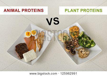 Animal Versus Plant Proteins