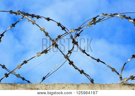 Barbed wire.Restricted area.The symbol protected the forbidden zone of the prison and captivity.