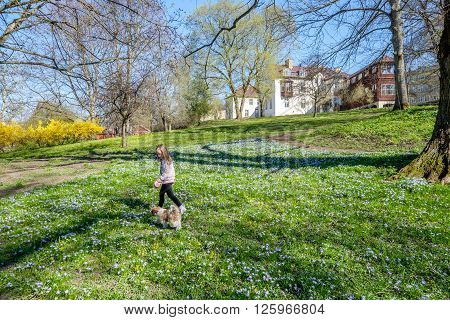NORRKOPING, SWEDEN - APRIL 21: Young girl walks a dog in a park during spring on April 21, 2015 in Norrkoping. The park Abackarna along Motala river is a popular recreational area in Norrkoping.