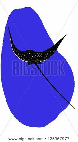 Spotted eagle ray near coral reef vector
