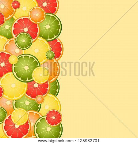 Vector background with different slice citruses. Space for text
