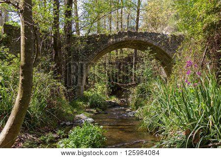 View of Medieval Bridge in Tris Elies village in Troodos, Cyprus