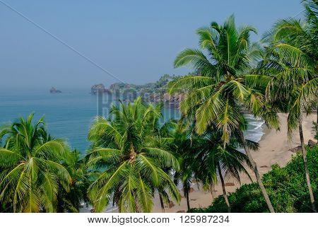 Sea View From Hidden Beach With Palms Near Agonda Beach, Goa State, India