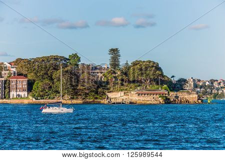 Sydney Australia - November 7 2014: Yacht boat sailing in the Sydney Harbour with houses in the background at Sydney Australia.