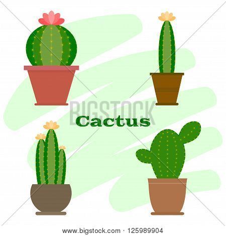 Set of cactus in flower pot. Cactus icon. Cartoon Cactus Illustration. Green and exotic plant. Flat style vector illustration.