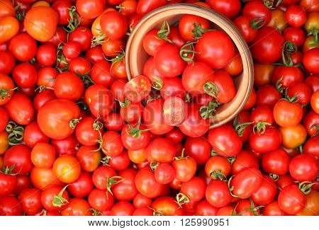 Red ripe juicy little cherry tomatoes wholesale