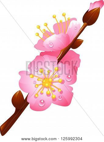 flowering cherry branch with drops of dew, eps 10