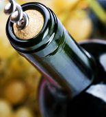 stock photo of wine bottle  - Wine Bottle closeup - JPG