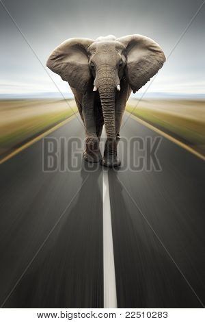 Conceptual - Heavy duty transport / travel by road (Digital composite)