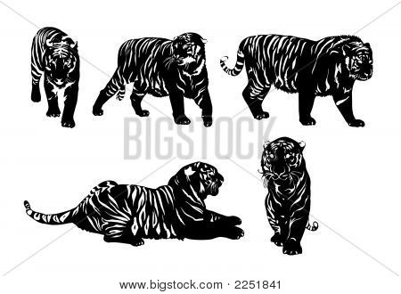 Five Silhouettes Of Tigers.Eps