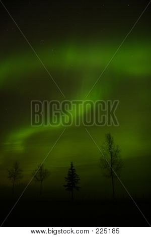 Aurora Borealis Near Fairbanks, Ak
