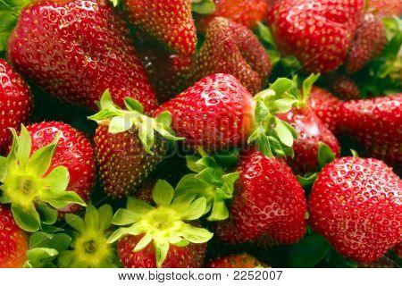 Strawberries Vol. 1