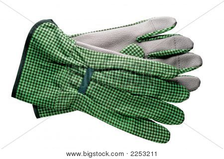 Gardening Tools: Gloves
